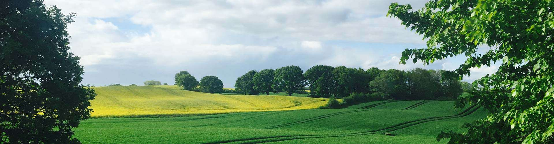 Nordjylland
